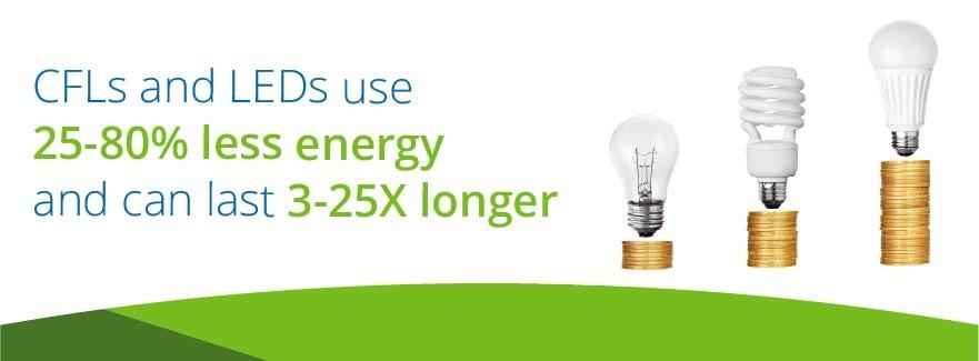 2-led-bulbs.jpg
