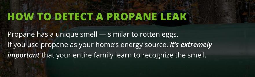 detect propane leak